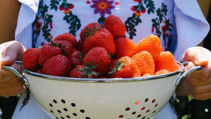 Erdbeeren-Titel