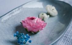 Blumen in einer Schale