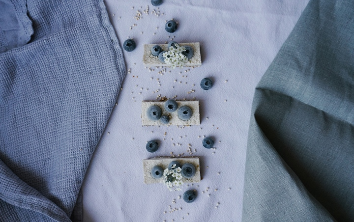 vegane Kokos-Cashew Riegel mit Blaubeeren